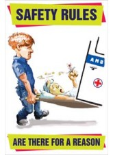 Safety Rules Are there for a Reason Poster